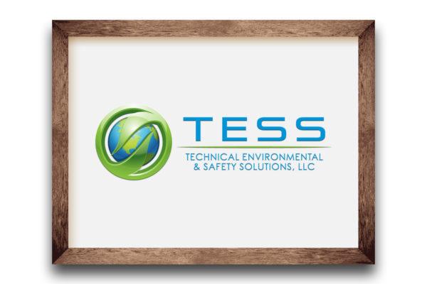 TESS Services